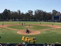 16-area-code-baseball-games