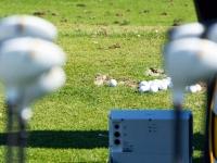 2013-PGA-Show-Flightscope-DemoDay-33